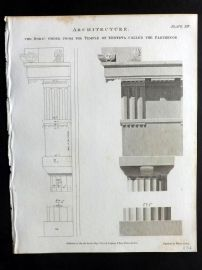Rees 1820 Antique Print. Architecture 13 Doric Order from Temple of Minerva